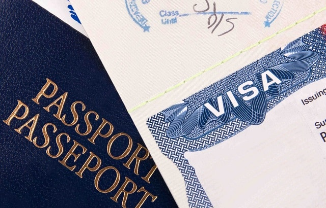 vize talep dilekçesi